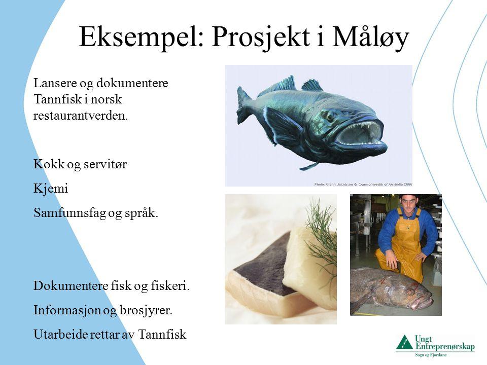 Eksempel: Prosjekt i Måløy