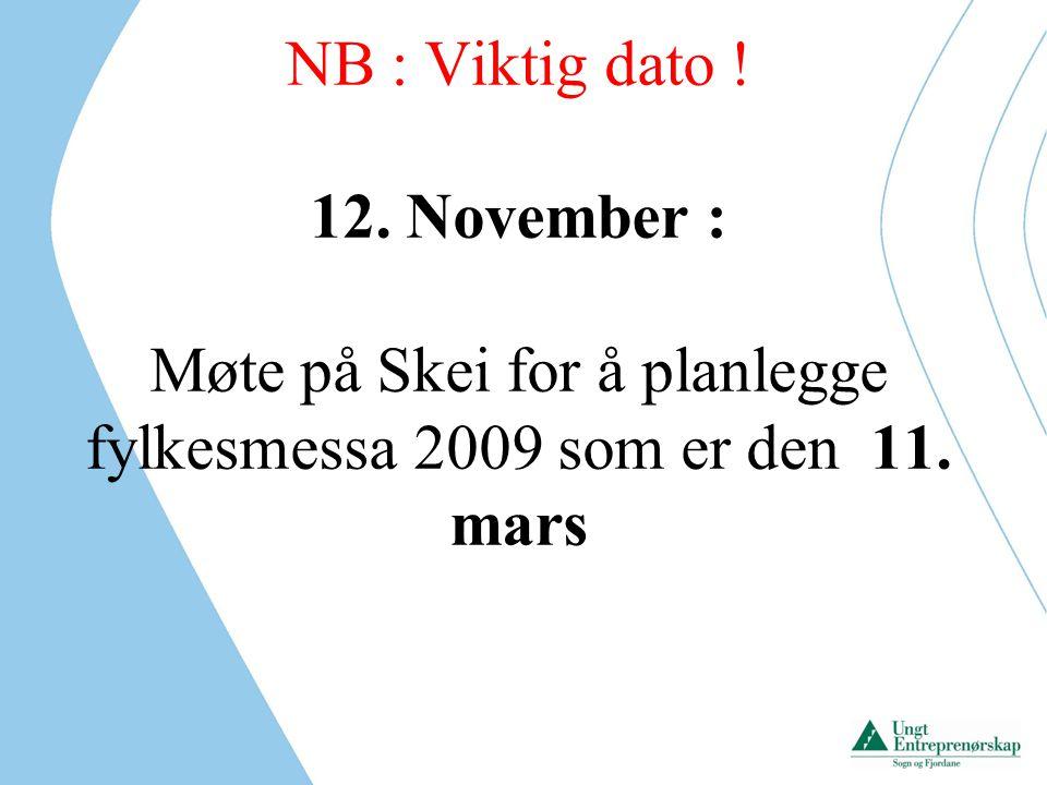 Møte på Skei for å planlegge fylkesmessa 2009 som er den 11. mars