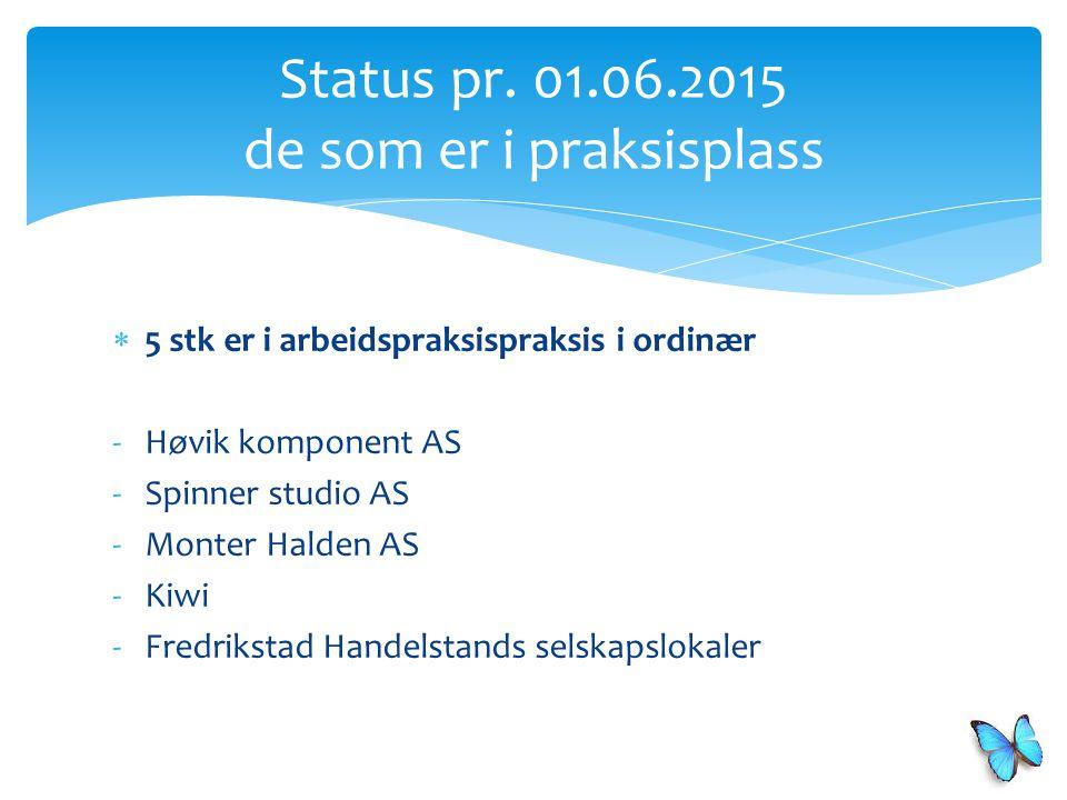 Status pr. 01.06.2015 de som er i praksisplass