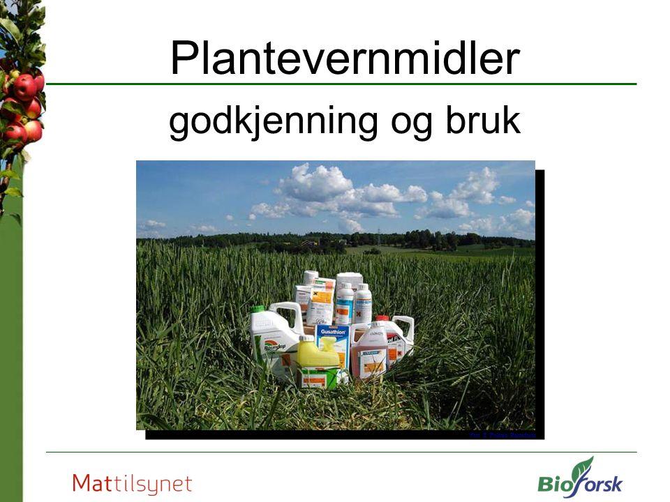Plantevernmidler godkjenning og bruk