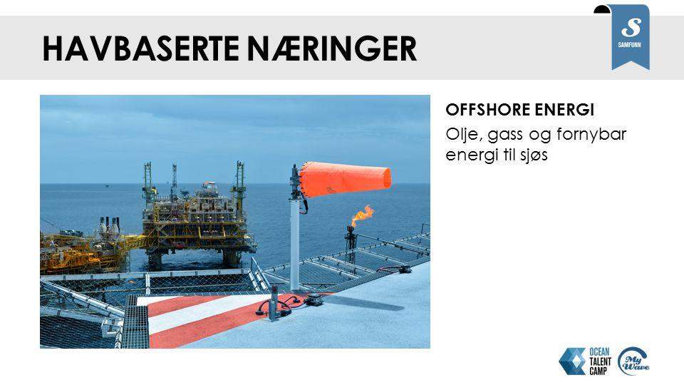 Havbaserte næringer OFFSHORE ENERGI Olje, gass og fornybar energi til sjøs Noen stikkord om næringene: