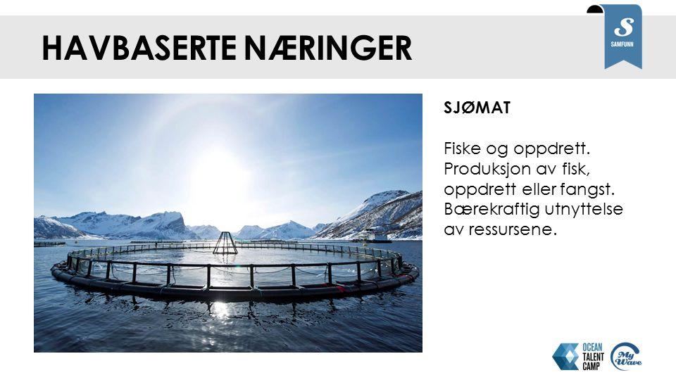 Havbaserte næringer SJØMAT Fiske og oppdrett. Produksjon av fisk, oppdrett eller fangst. Bærekraftig utnyttelse av ressursene.