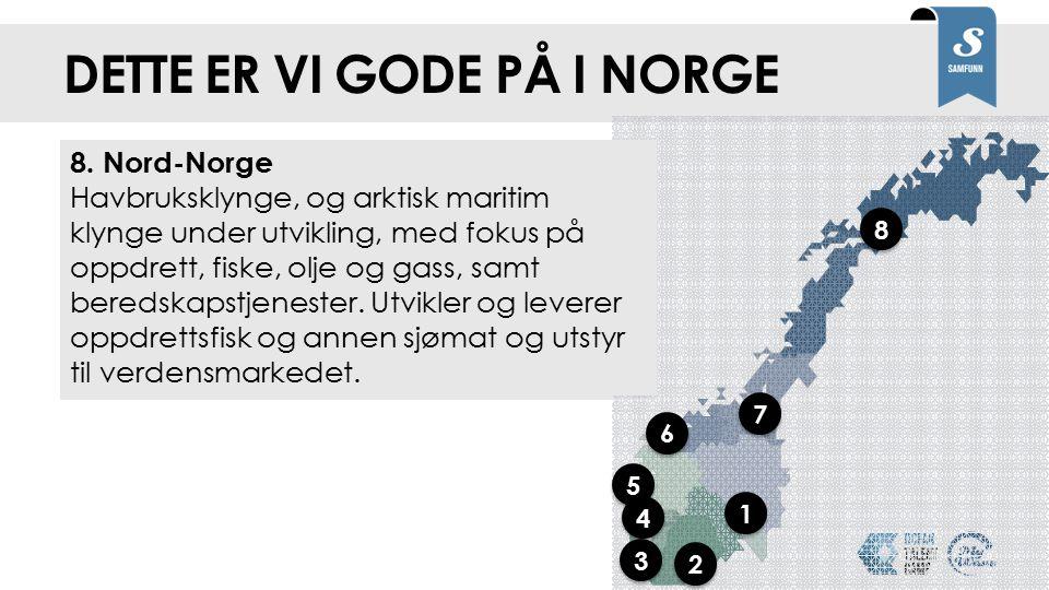 Dette er vi gode på i Norge