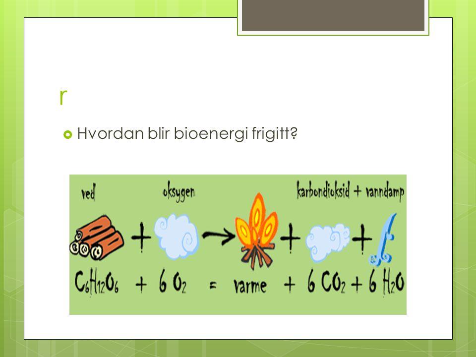 r Hvordan blir bioenergi frigitt
