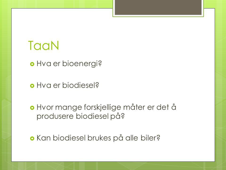 TaaN Hva er bioenergi Hva er biodiesel
