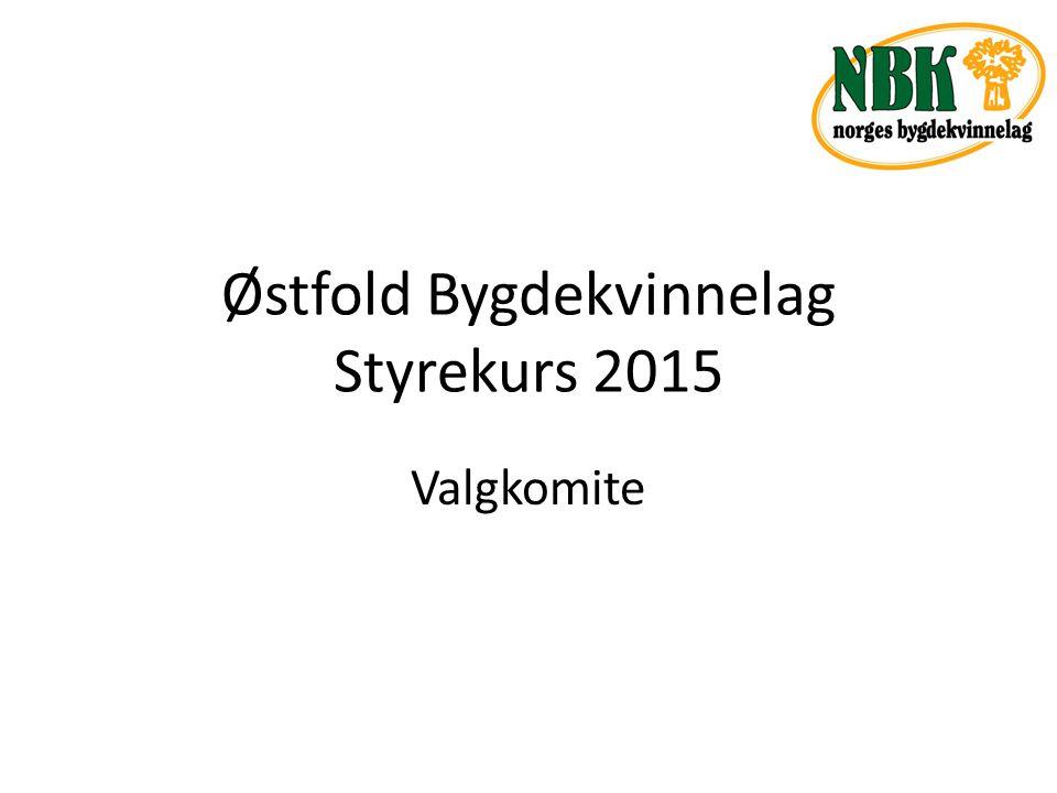 Østfold Bygdekvinnelag Styrekurs 2015