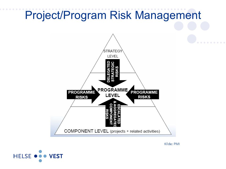 Project/Program Risk Management