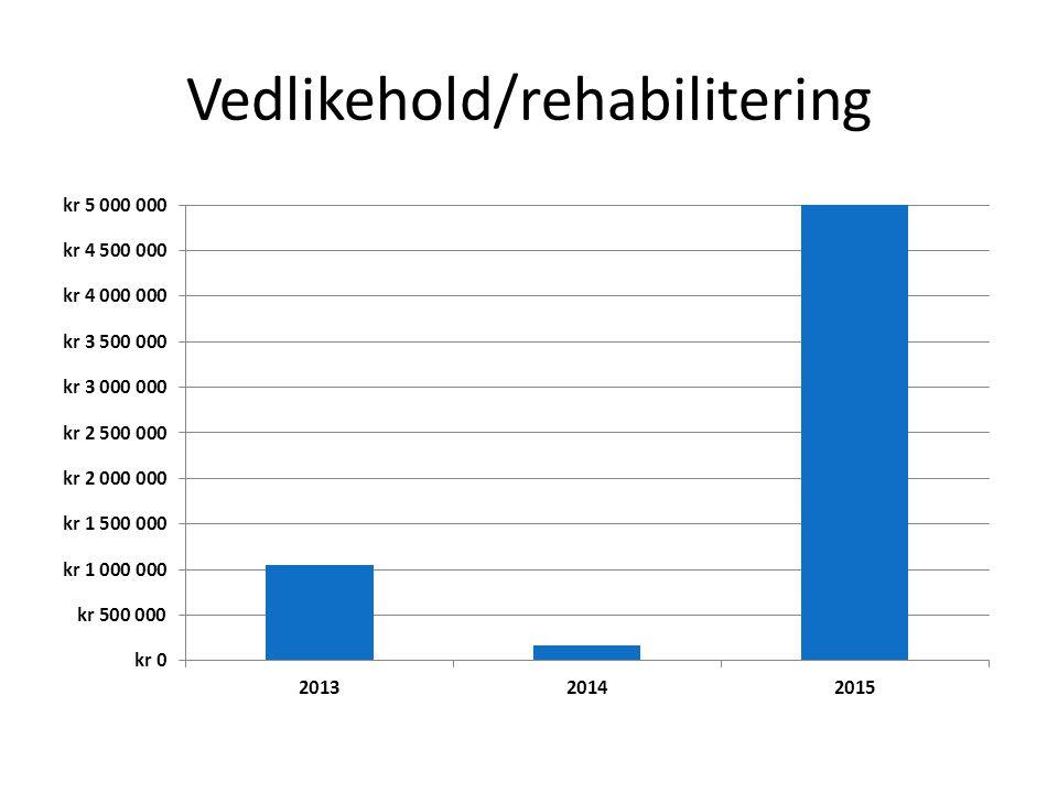 Vedlikehold/rehabilitering
