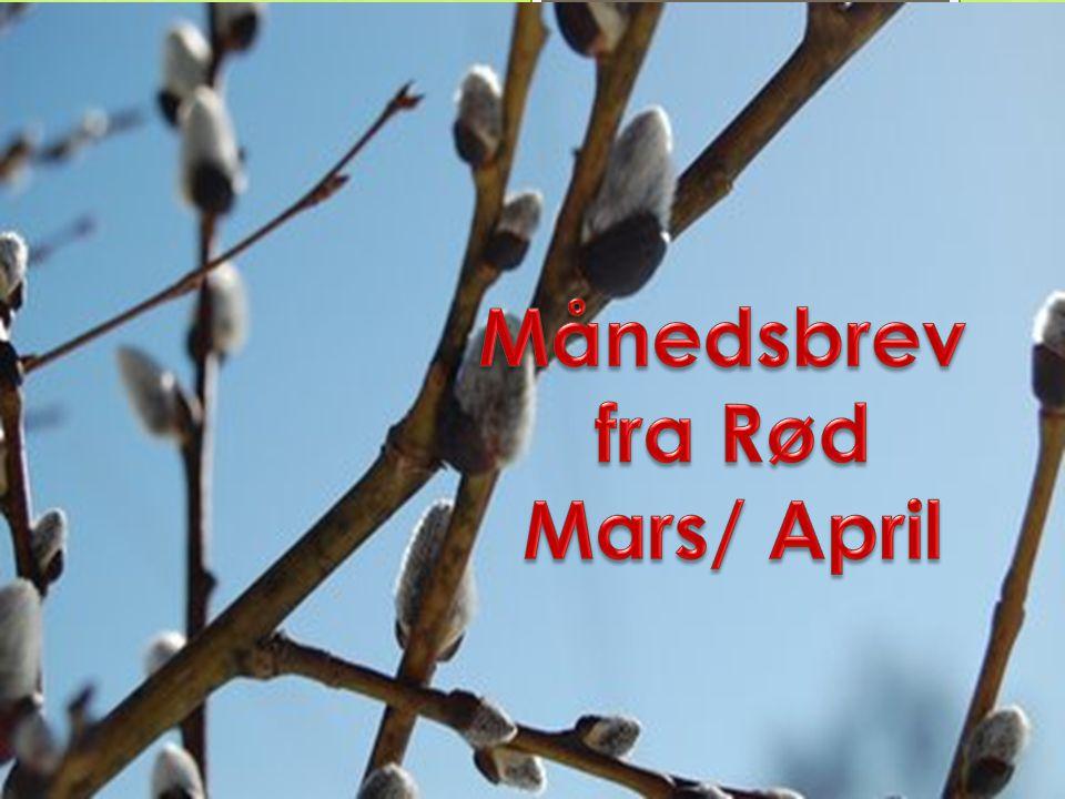 Månedsbrev fra Rød Mars/ April