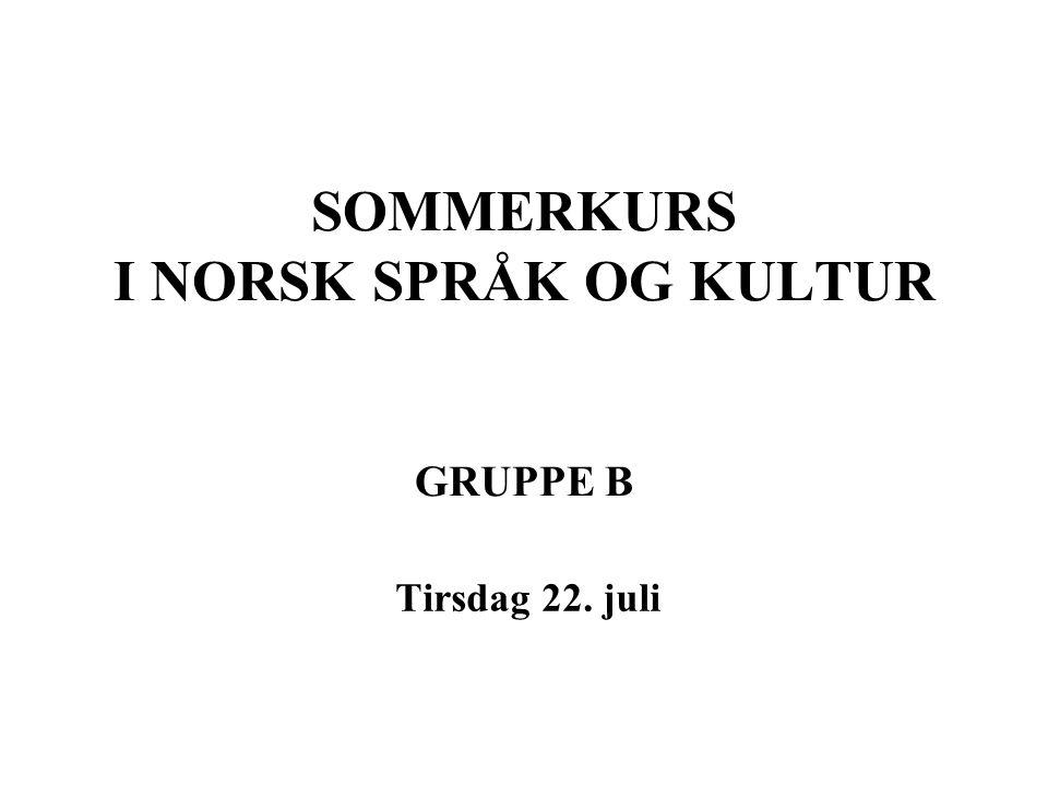 SOMMERKURS I NORSK SPRÅK OG KULTUR GRUPPE B
