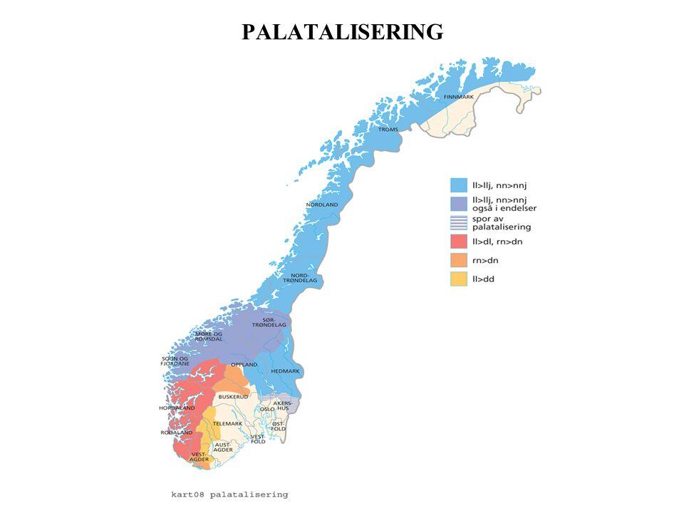 PALATALISERING