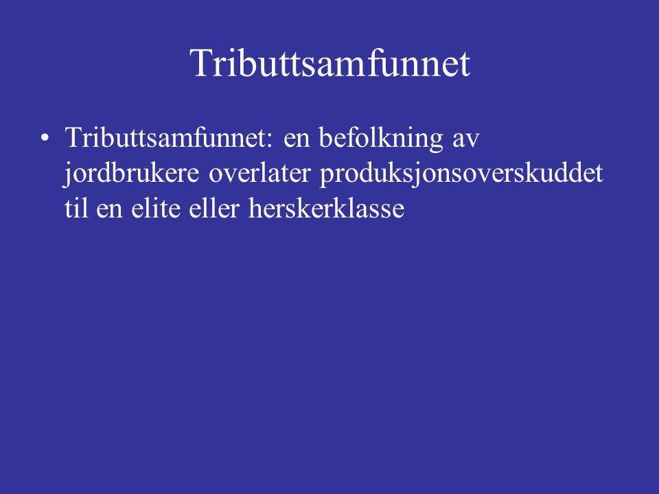 Tributtsamfunnet Tributtsamfunnet: en befolkning av jordbrukere overlater produksjonsoverskuddet til en elite eller herskerklasse.