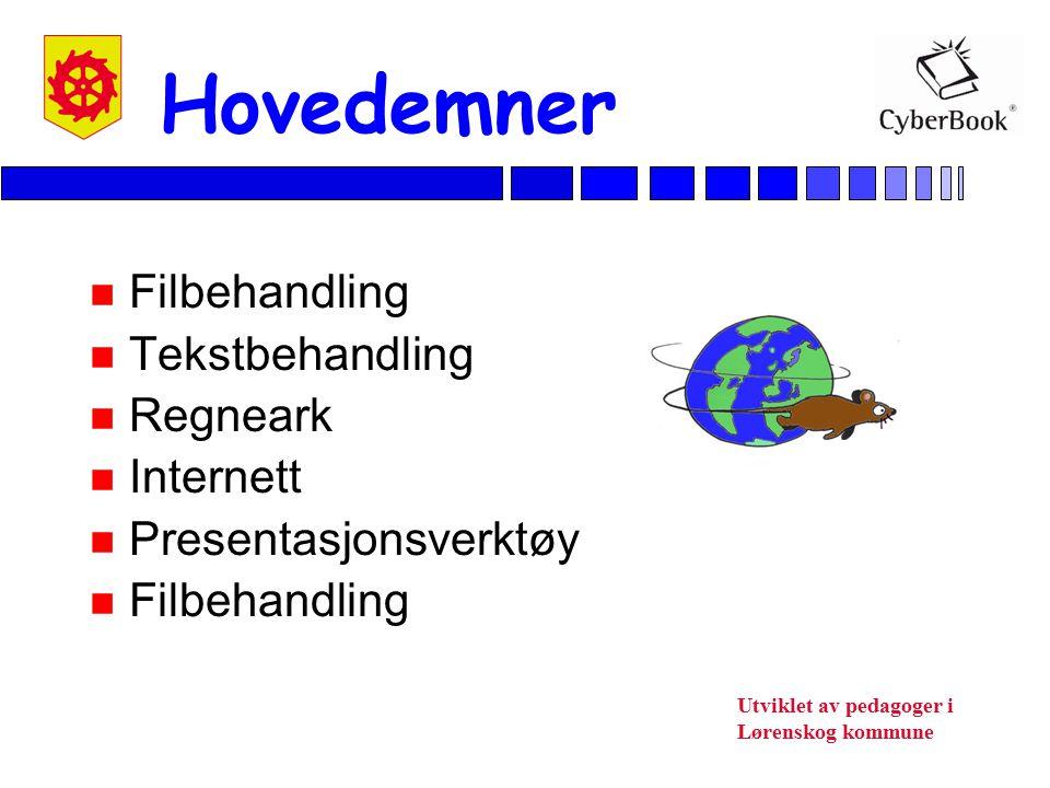Hovedemner Filbehandling Tekstbehandling Regneark Internett