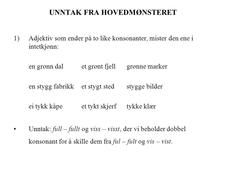 UNNTAK FRA HOVEDMØNSTERET