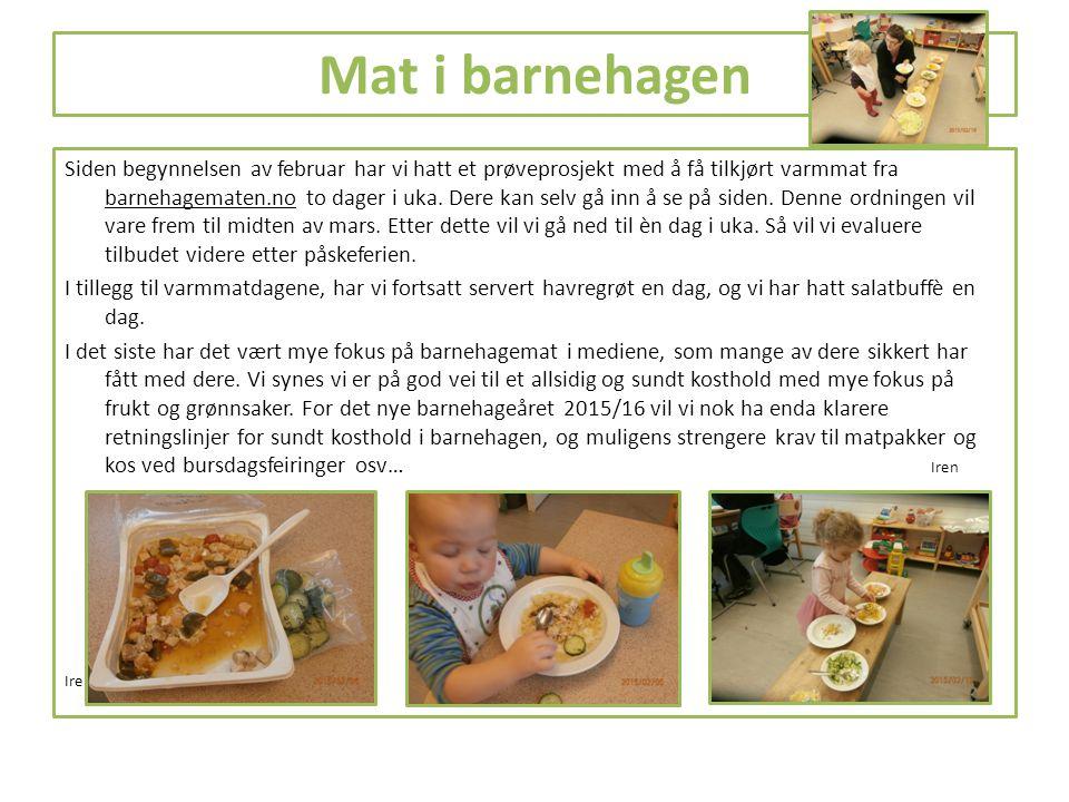 Mat i barnehagen