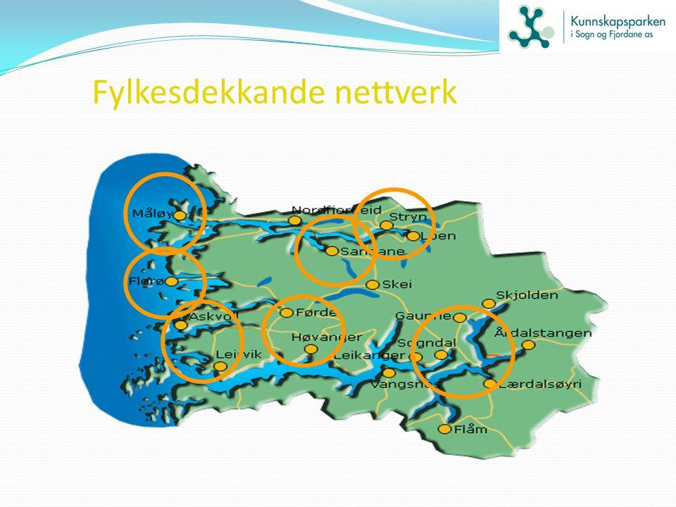 Fylkesdekkande nettverk