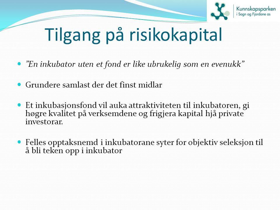 Tilgang på risikokapital