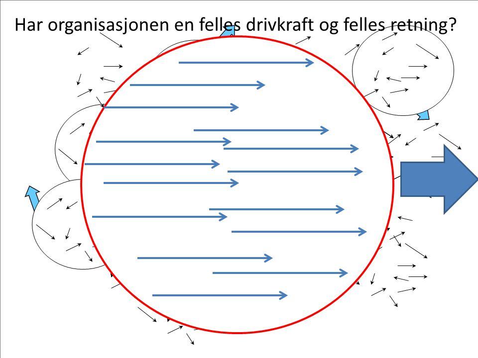 Har organisasjonen en felles drivkraft og felles retning