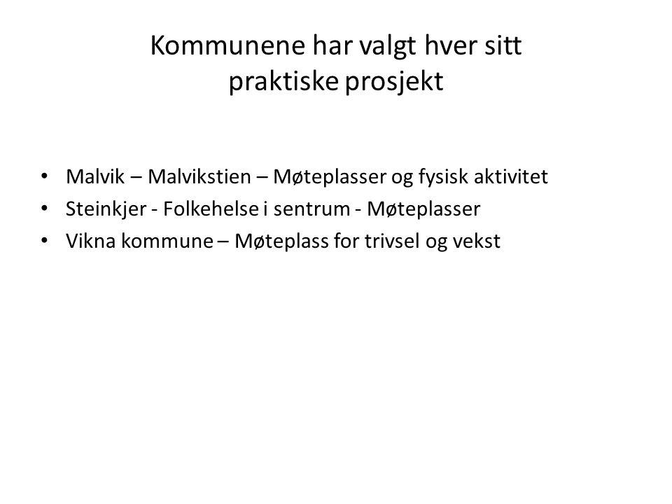 Kommunene har valgt hver sitt praktiske prosjekt