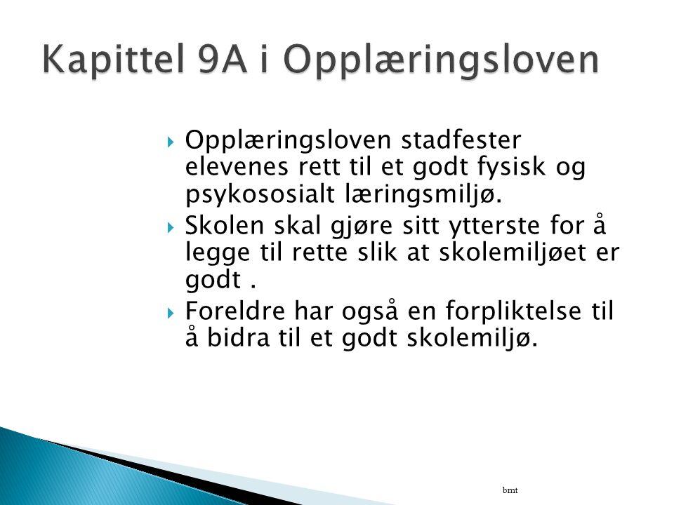 Kapittel 9A i Opplæringsloven