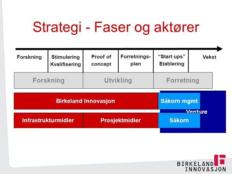 Strategi - Faser og aktører