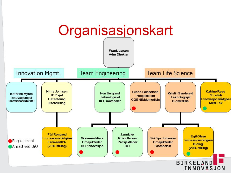 Organisasjonskart Innovation Mgmt. Team Engineering Team Life Science
