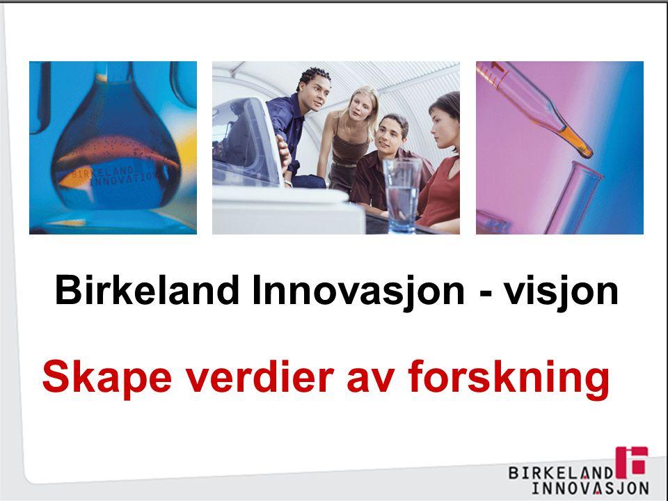 Birkeland Innovasjon - visjon
