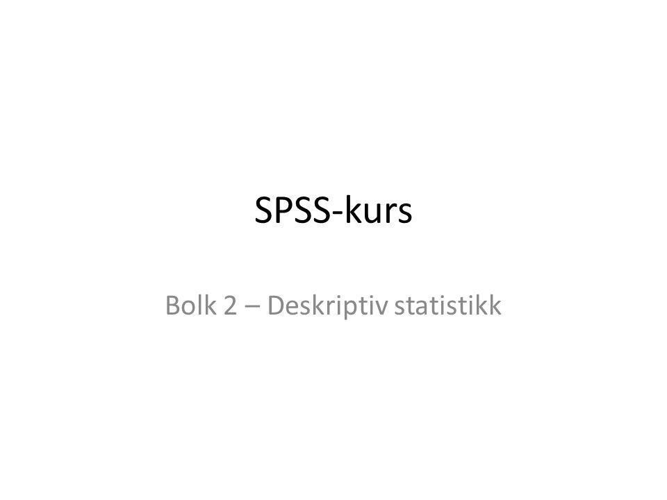 Bolk 2 – Deskriptiv statistikk