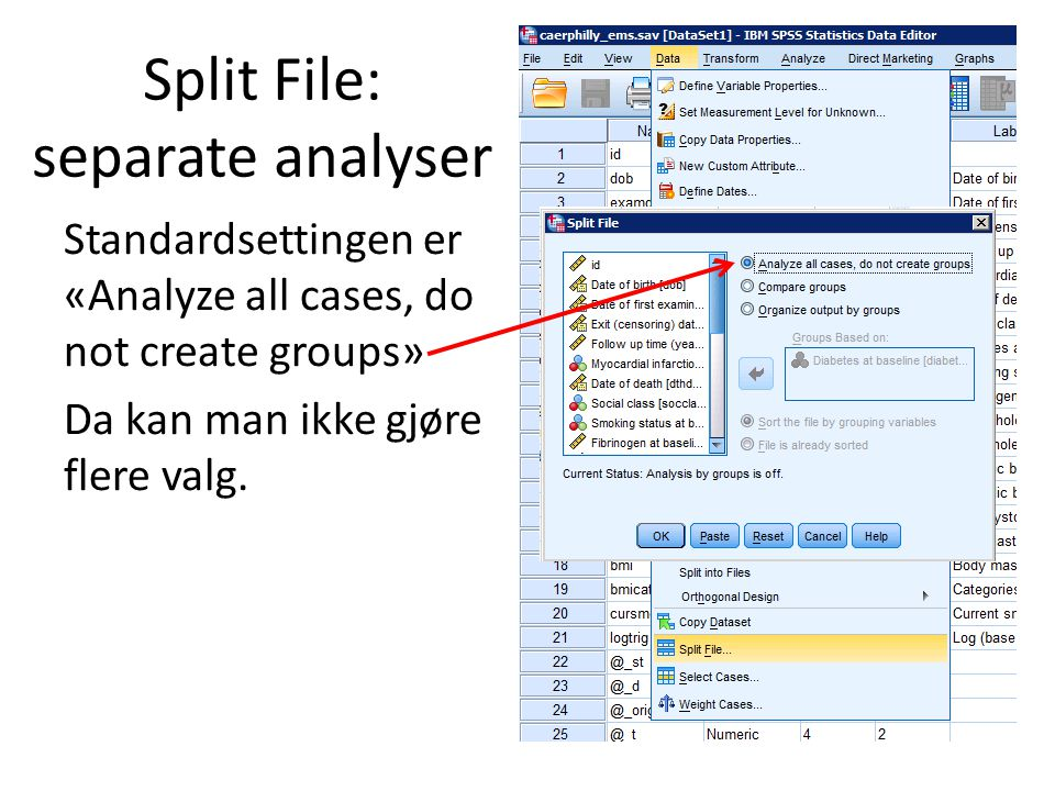 Split File: separate analyser