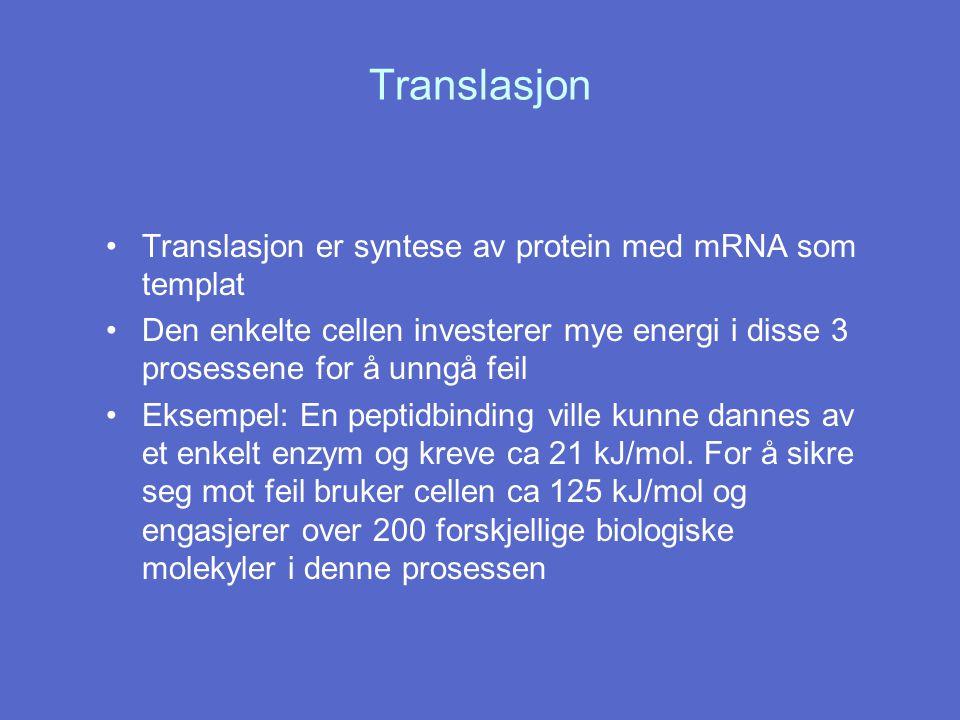 Translasjon Translasjon er syntese av protein med mRNA som templat