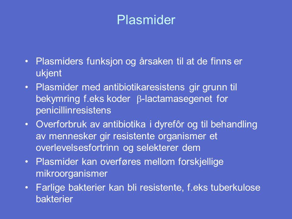 Plasmider Plasmiders funksjon og årsaken til at de finns er ukjent