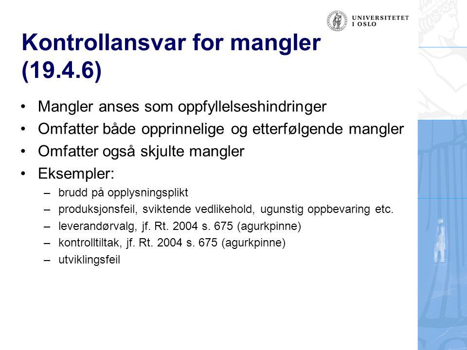 Kontrollansvar for mangler (19.4.6)