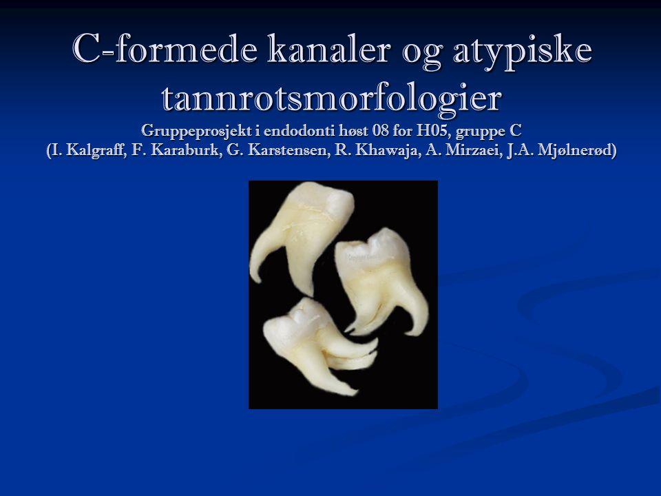 C-formede kanaler og atypiske tannrotsmorfologier Gruppeprosjekt i endodonti høst 08 for H05, gruppe C (I.