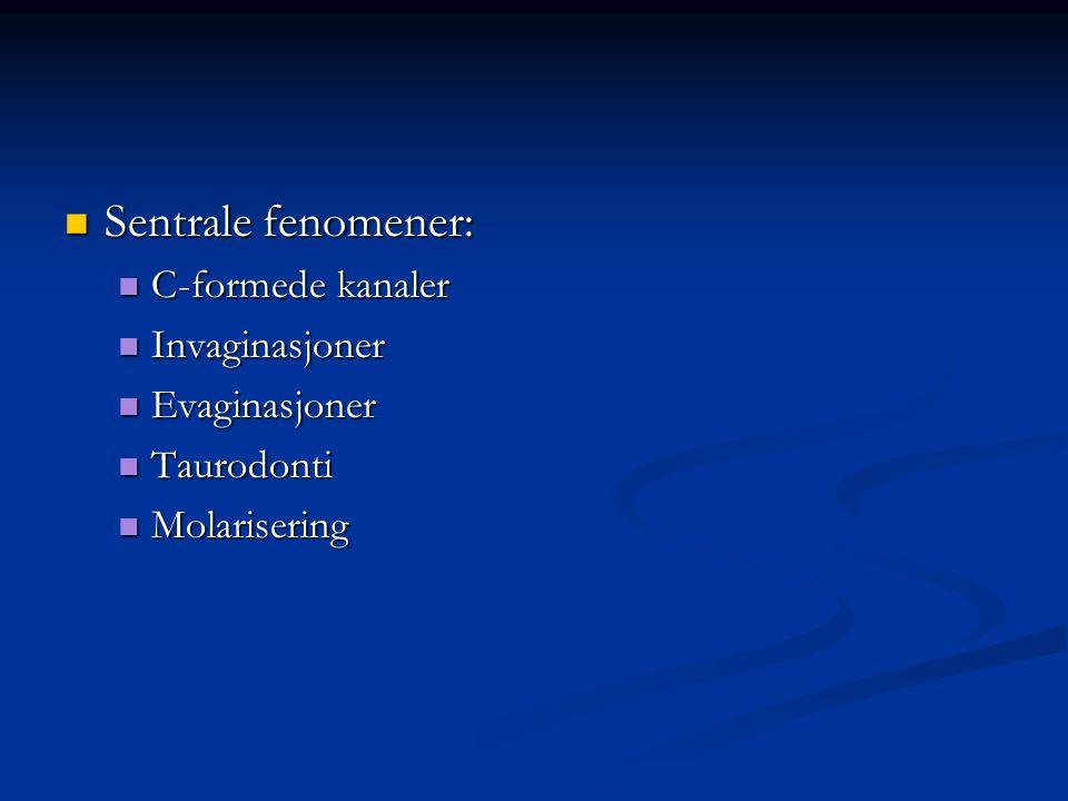 Sentrale fenomener: C-formede kanaler Invaginasjoner Evaginasjoner