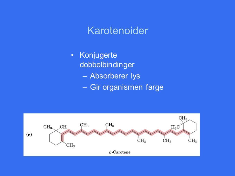 Karotenoider Konjugerte dobbelbindinger Absorberer lys