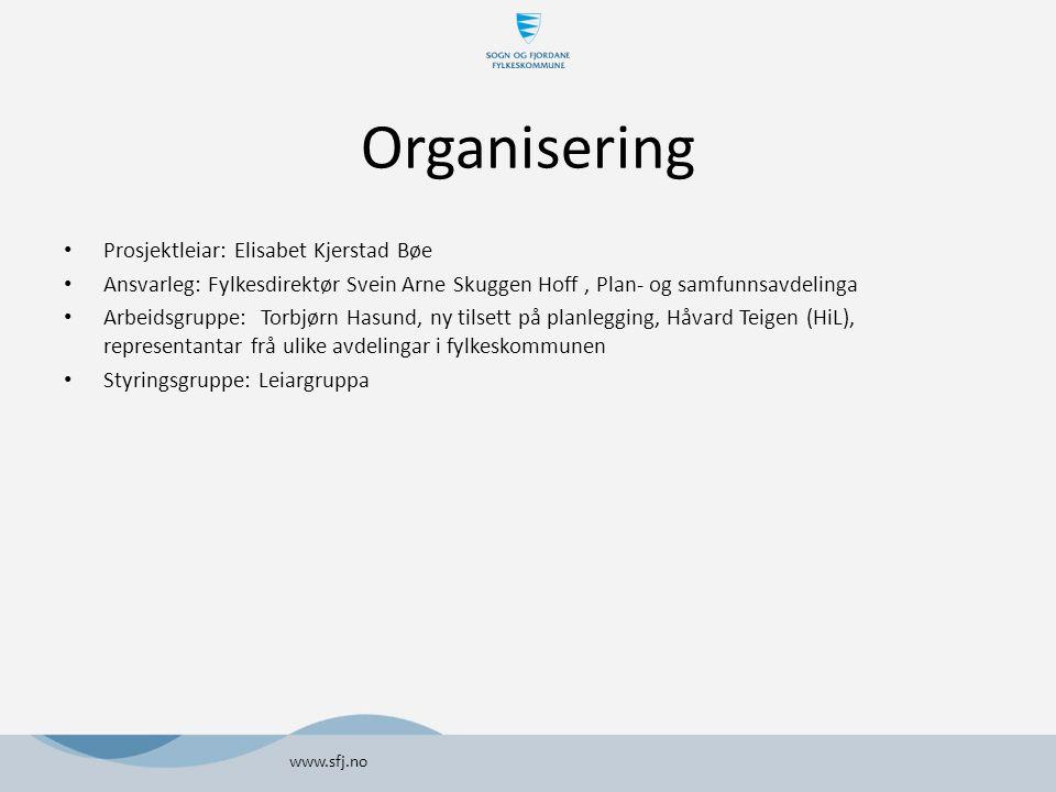 Organisering Prosjektleiar: Elisabet Kjerstad Bøe