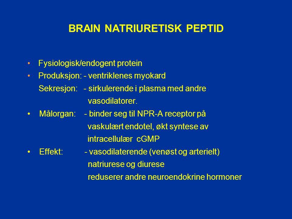 BRAIN NATRIURETISK PEPTID