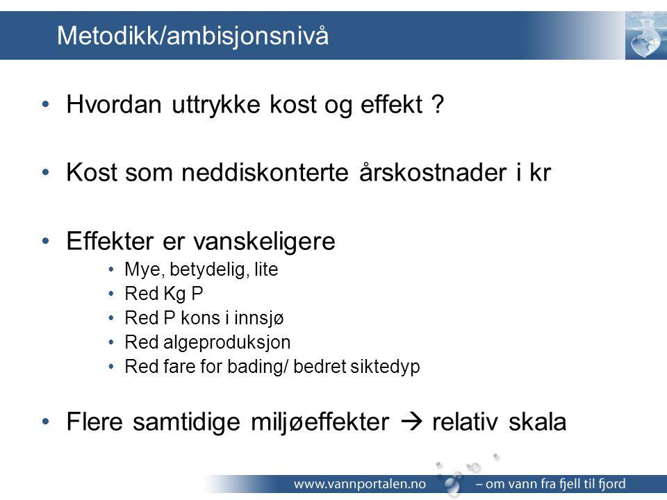 Metodikk/ambisjonsnivå