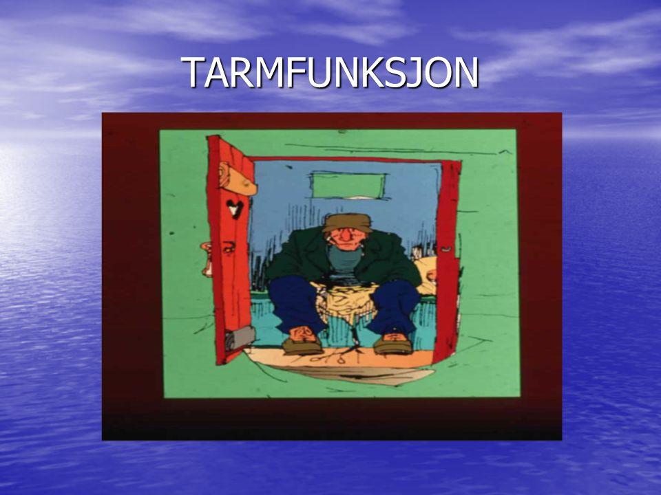 TARMFUNKSJON