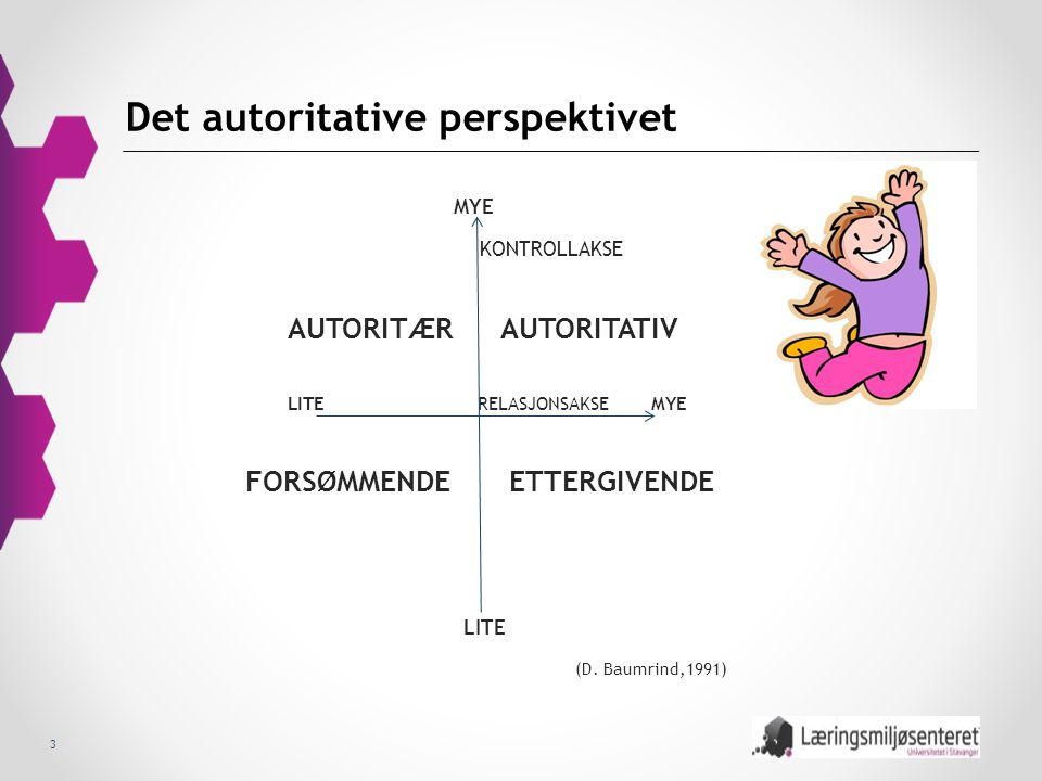 Det autoritative perspektivet