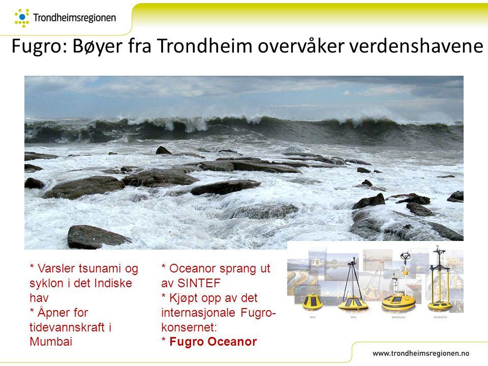 Fugro: Bøyer fra Trondheim overvåker verdenshavene