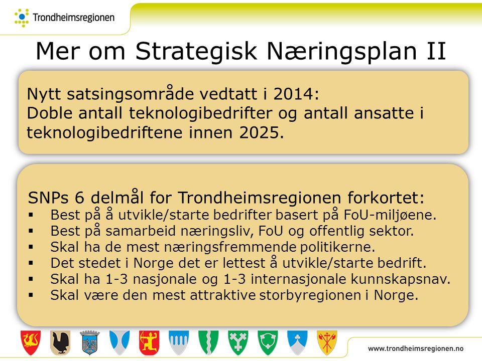 Mer om Strategisk Næringsplan II