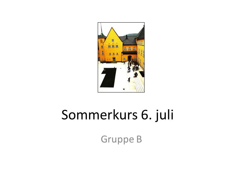 Sommerkurs 6. juli Gruppe B