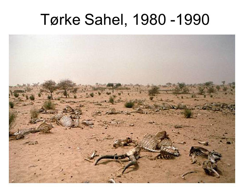 Tørke Sahel, 1980 -1990