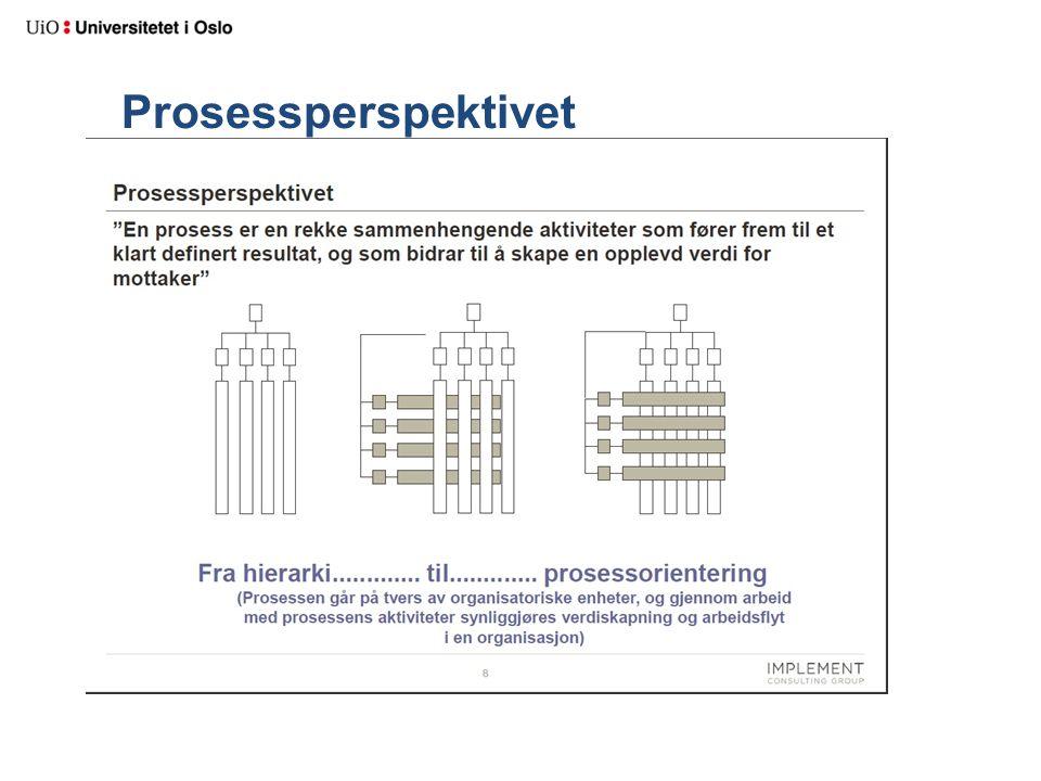 Prosessperspektivet