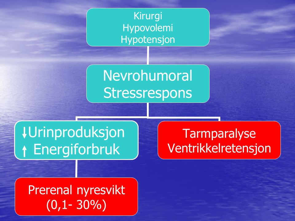 BT-fall per og postoperativt kan medføre prerenal nyresvikt (Stubberud), Hyppigheten avhenger av varierer relatert til blant annet opereasjonstype,