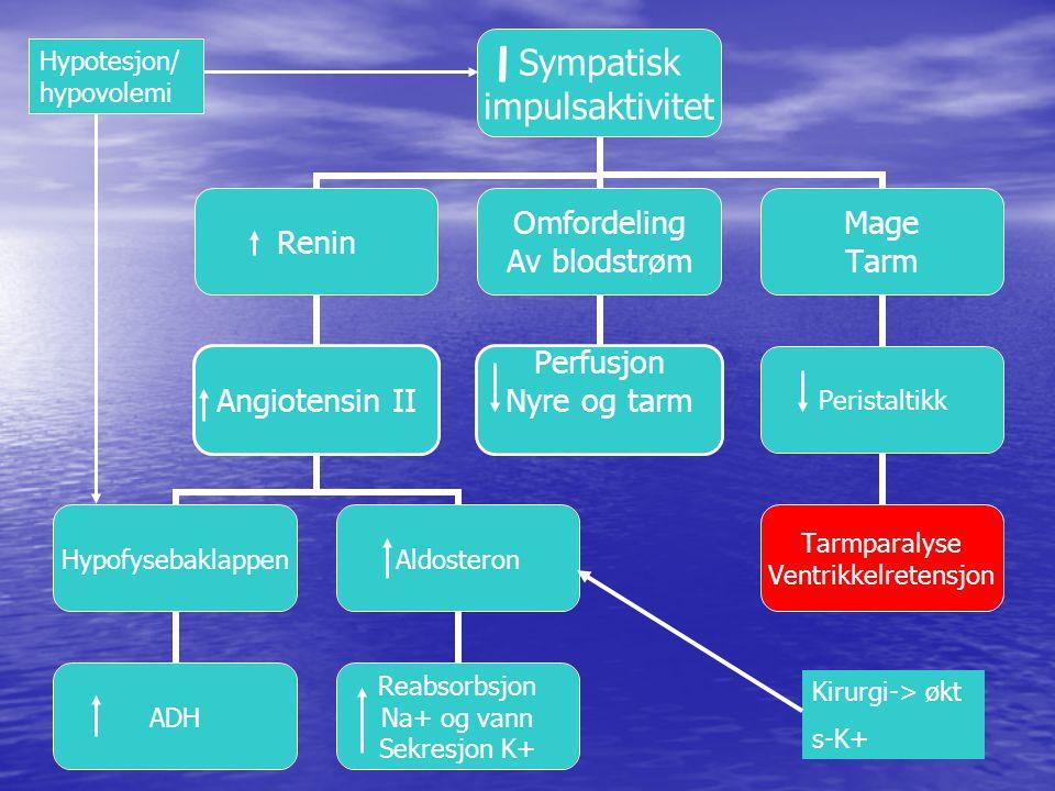 Hypotesjon/ hypovolemi
