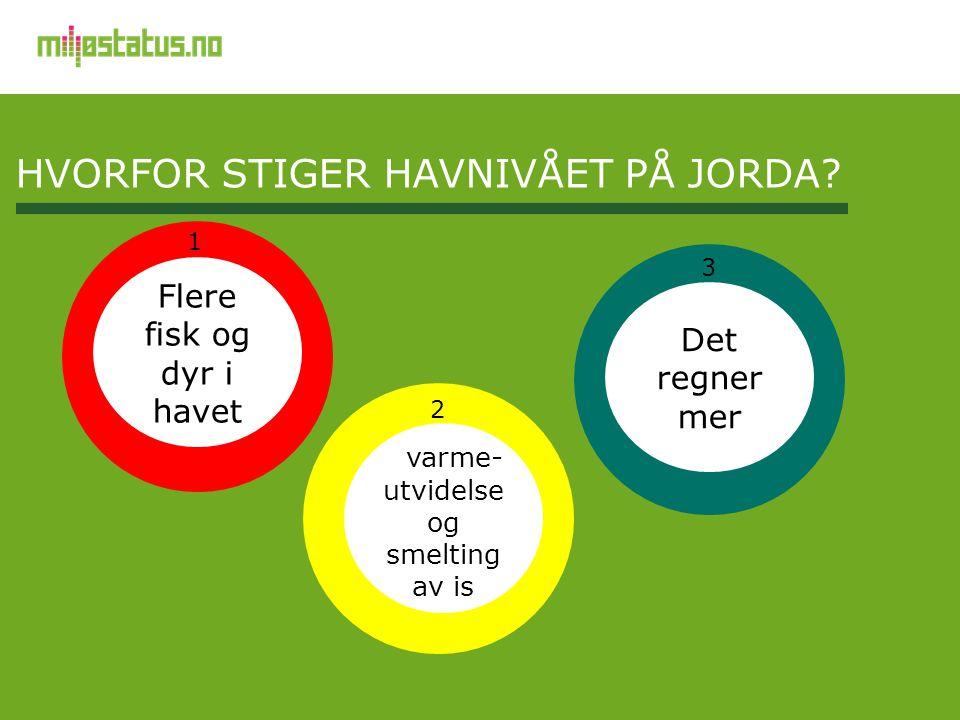 HVORFOR STIGER HAVnivået PÅ JORDA