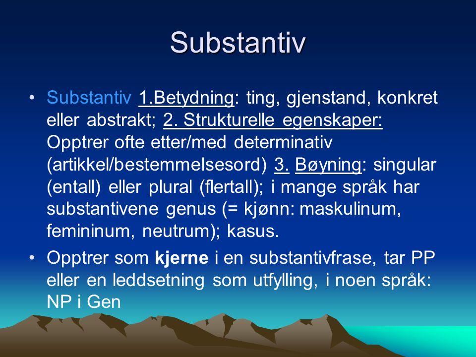 Substantiv