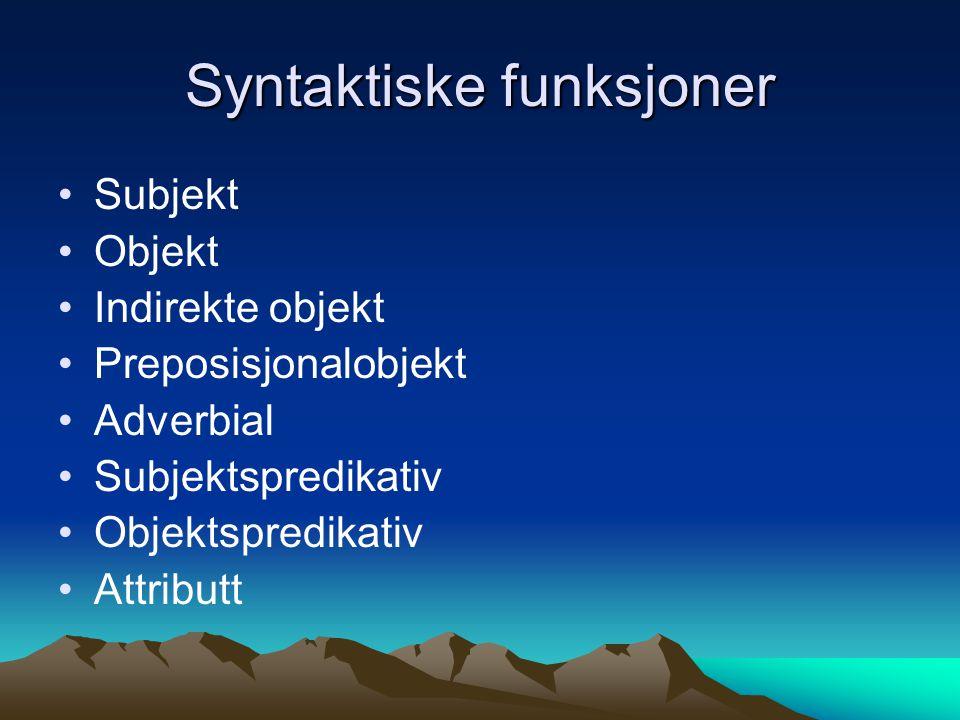 Syntaktiske funksjoner